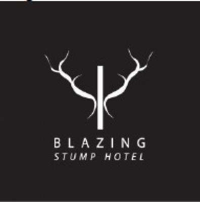 Blazing Stump Hotel - image 2