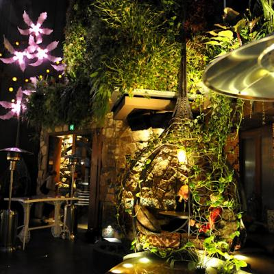 Cloudland Bar - image 2