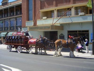Knickerbocker Hotel Motel - image 2