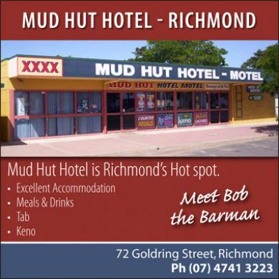 Mud Hut Hotel Motel - image 1