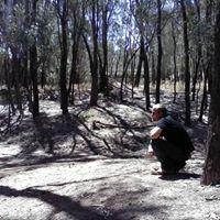 Dave Poulton's picture