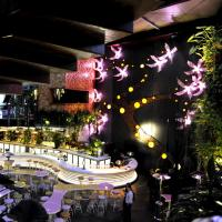 Cloudland Bar - image 1