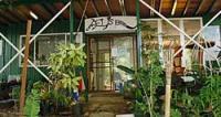 Goat Island Lodge