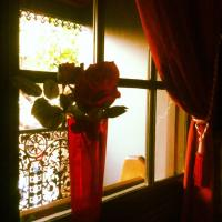 The Hazy Rose