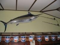 The Marlin Bar - image 2