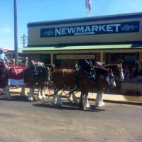 Newmarket Hotel - image 1