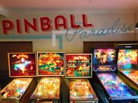 Pinball Paradise - image 1