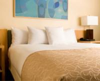 Pittsworth Hotel Motel - image 3