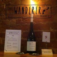 The Wanderer - image 1